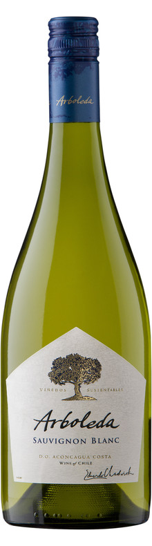 Sauvignon Blanc Aconcagua 2016